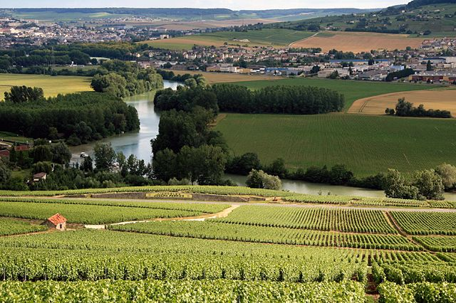 640px-Champagne_Vineyards